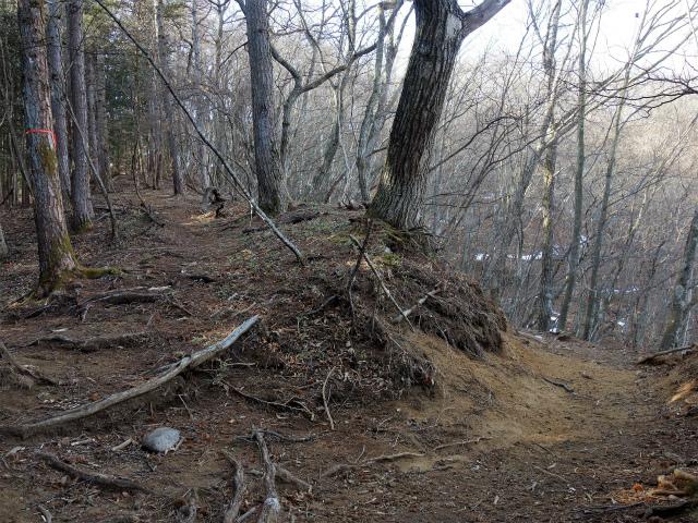 鷹ノ巣山(六ツ石山~石尾根縦走路)登山口コースガイド 三ノ木戸山分岐【登山口ナビ】