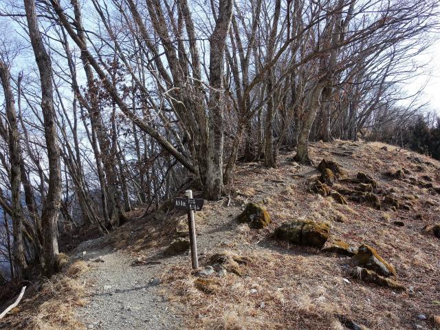 鷹ノ巣山(六ツ石山~石尾根縦走路)登山口コースガイド 三ノ木戸山稜線分岐【登山口ナビ】