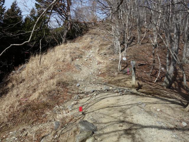 鷹ノ巣山(六ツ石山~石尾根縦走路)登山口コースガイド 三ノ木戸方面分岐【登山口ナビ】
