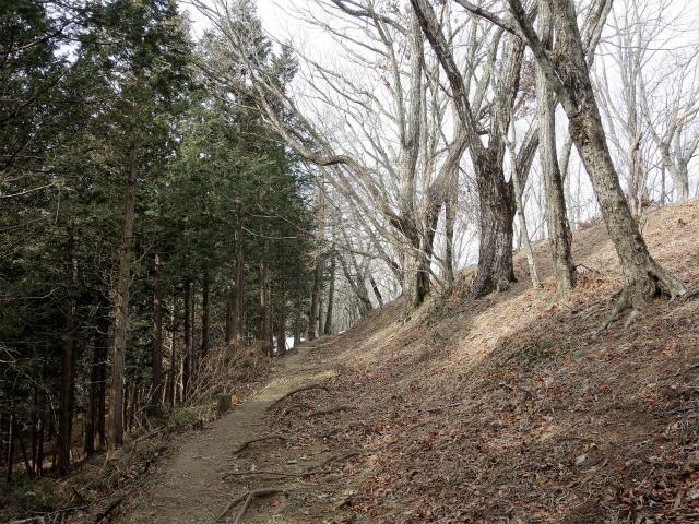 鷹ノ巣山(六ツ石山~石尾根縦走路)登山口コースガイド 狩倉山巻き道【登山口ナビ】