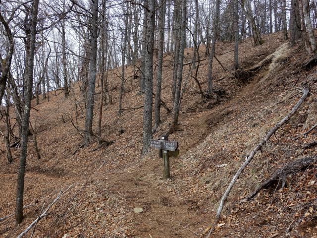 鷹ノ巣山(六ツ石山~石尾根縦走路)登山口コースガイド 尾根筋コース分岐【登山口ナビ】