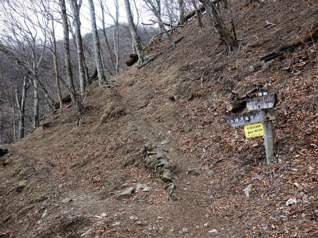 鷹ノ巣山(六ツ石山~石尾根縦走路)登山口コースガイド 水根沢林道分岐【登山口ナビ】