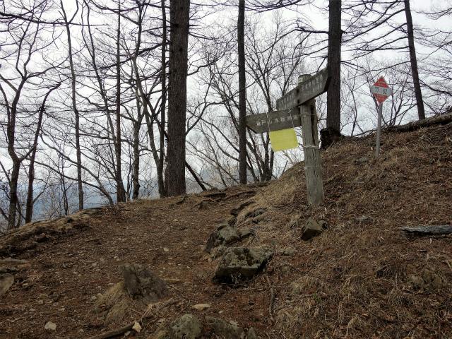 鷹ノ巣山(六ツ石山~石尾根縦走路)登山口コースガイド 榧ノ木尾根分岐【登山口ナビ】