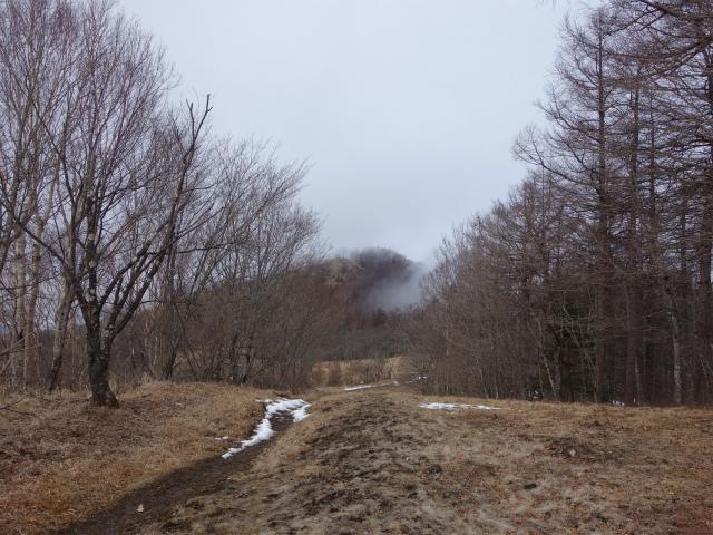 鷹ノ巣山(六ツ石山~石尾根縦走路)登山口コースガイド 山頂直下【登山口ナビ】