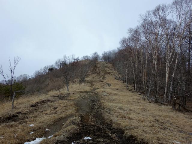 鷹ノ巣山(六ツ石山~石尾根縦走路)登山口コースガイド 山頂手前の急登【登山口ナビ】
