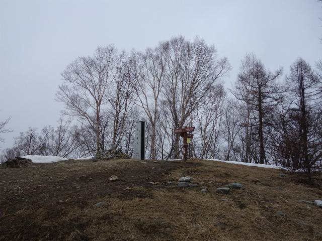 鷹ノ巣山(六ツ石山~石尾根縦走路)登山口コースガイド 鷹ノ巣山山頂【登山口ナビ】