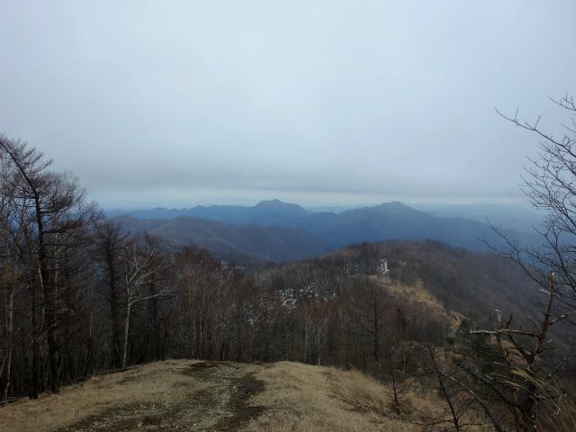 鷹ノ巣山(六ツ石山~石尾根縦走路)登山口コースガイド 鷹ノ巣山山頂からの奥多摩方面の眺望【登山口ナビ】