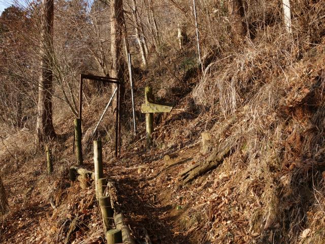 丹沢山(宮ケ瀬~丹沢三峰)登山口コースガイド 春ノ木丸ハイキングコース【登山口ナビ】