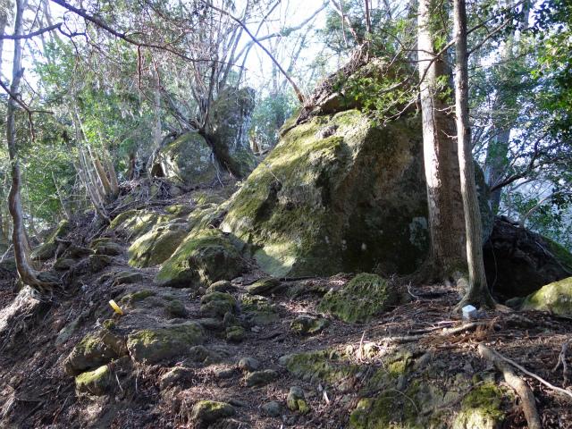 丹沢山(宮ケ瀬~丹沢三峰)登山口コースガイド 苔むした岩【登山口ナビ】