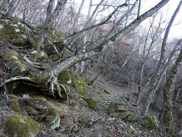 丹沢山(宮ケ瀬~丹沢三峰)登山口コースガイド 北側のトラバース【登山口ナビ】
