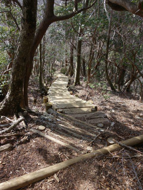丹沢山(宮ケ瀬~丹沢三峰)登山口コースガイド 無名ノ頭の階段の下り【登山口ナビ】