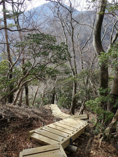 丹沢山(宮ケ瀬~丹沢三峰)登山口コースガイド 円山木ノ頭から階段の下り【登山口ナビ】