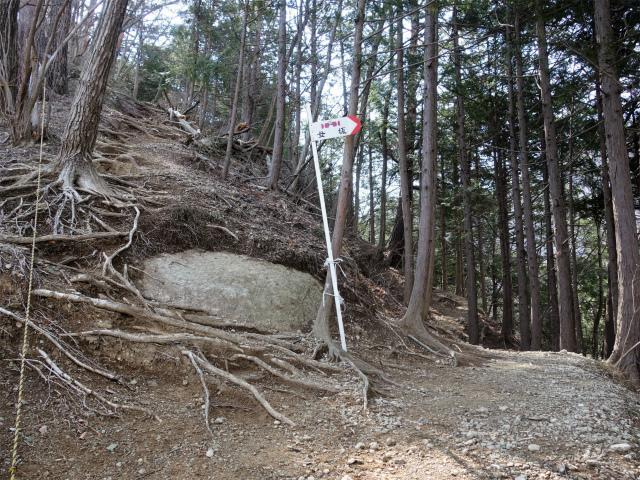 高川山(男坂/女坂~沢コース)登山口コースガイド 分岐【登山口ナビ】