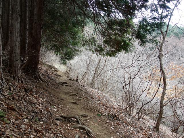高川山(男坂/女坂~沢コース)登山口コースガイド【登山口ナビ】