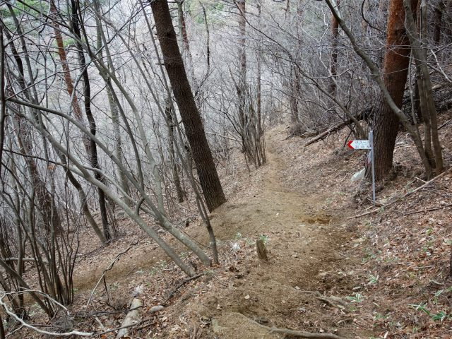 高川山(男坂/女坂~沢コース)登山口コースガイド 玉子石コース分岐【登山口ナビ】