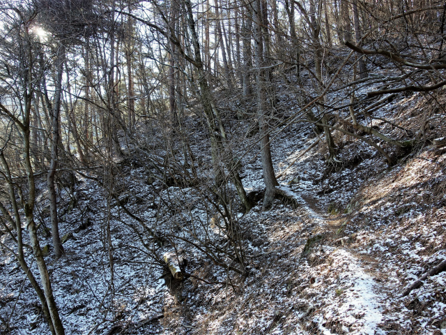 蛭ヶ岳(八丁坂ノ頭~姫次)登山口コースガイド 945mピーク巻き道【登山口ナビ】