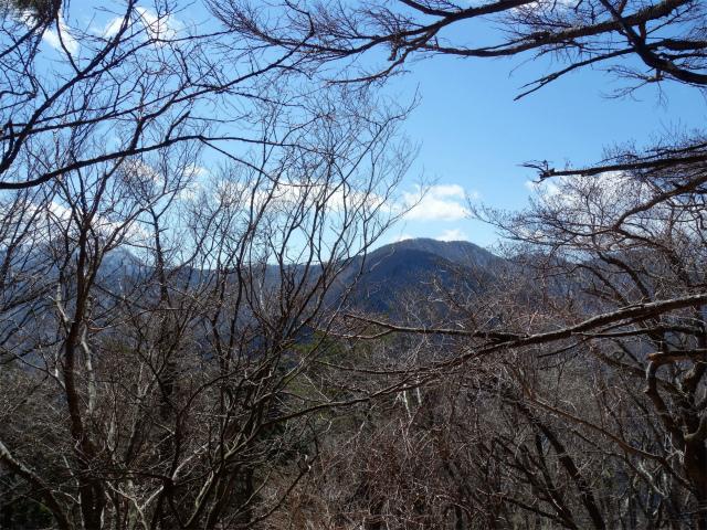 黍殻山(釜立林道~青根分岐)登山口コースガイド 黍殻山山頂からの眺望【登山口ナビ】