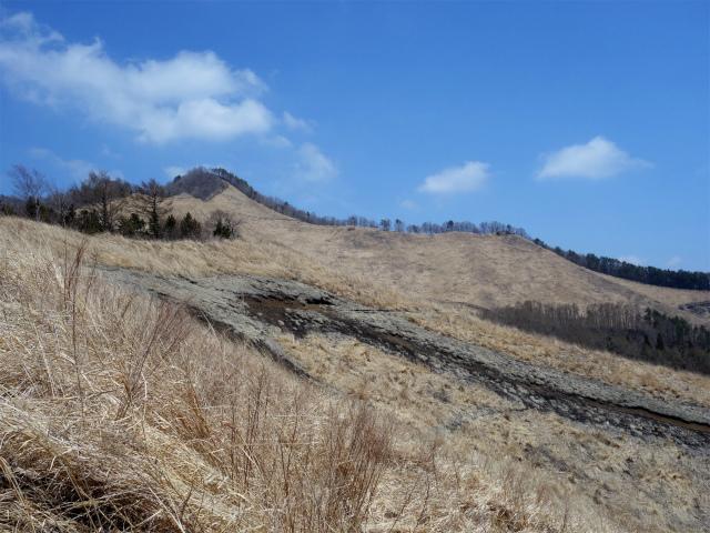 杓子山(鳥居地峠~高座山)登山口コースガイド カヤト原【登山口ナビ】