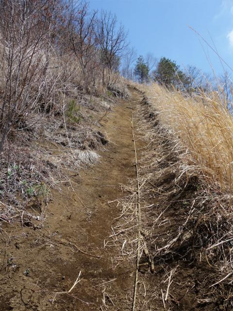杓子山(鳥居地峠~高座山)登山口コースガイド ロープの急登【登山口ナビ】