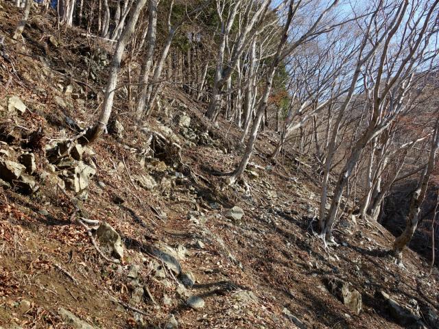 塔ノ岳(書策新道) 登山口コースガイド トラバース【登山口ナビ】