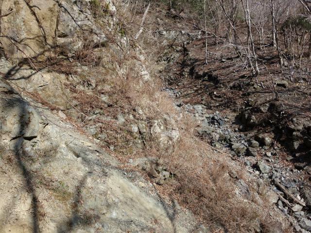 塔ノ岳(書策新道) 登山口コースガイド 崩落個所の横断【登山口ナビ】