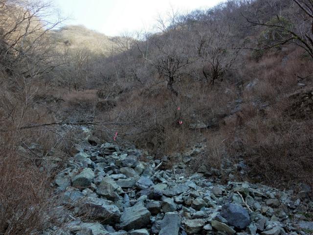 塔ノ岳(書策新道) 登山口コースガイド セドノ沢左岸へ渡渉【登山口ナビ】