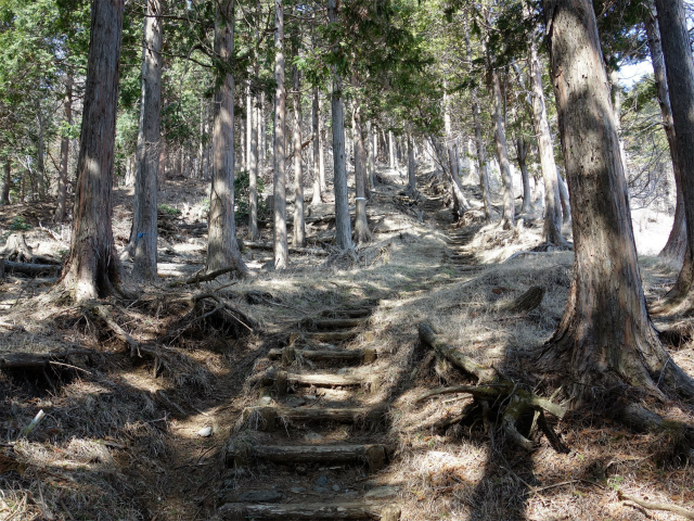 三ノ塔(三ノ塔尾根) 登山口コースガイド 階段の急登【登山口ナビ】