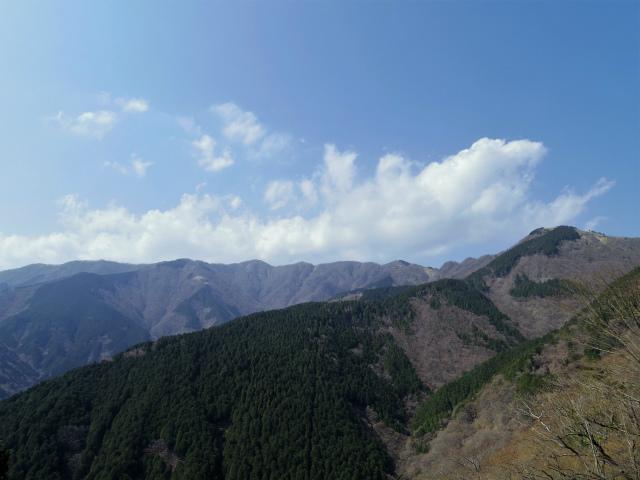 三ノ塔(三ノ塔尾根) 登山口コースガイド 作業道からの塔ノ岳や鍋割山稜【登山口ナビ】