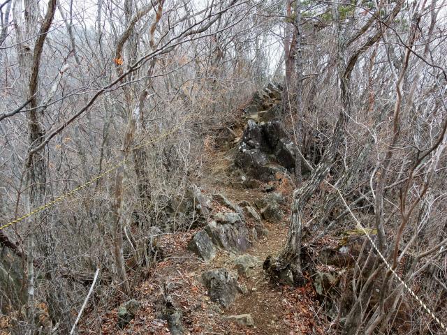 杓子山(鳥居地峠~高座山)登山口コースガイド 岩がちな道【登山口ナビ】