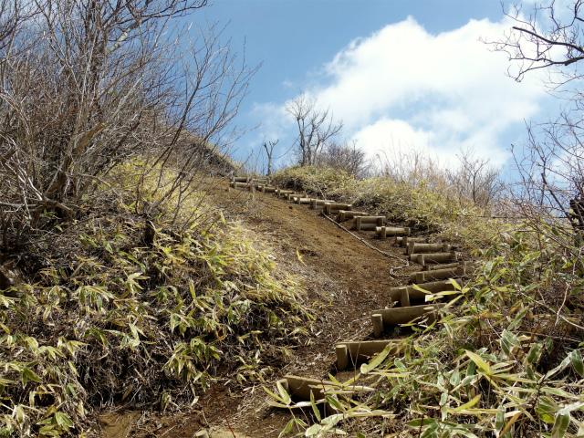 杓子山(鳥居地峠~高座山)登山口コースガイド 山頂直下の階段【登山口ナビ】