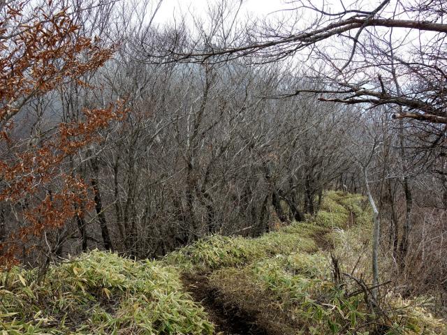 鹿留山(不動湯~杓子山)登山口コースガイド パノラマトレイルランコース【登山口ナビ】