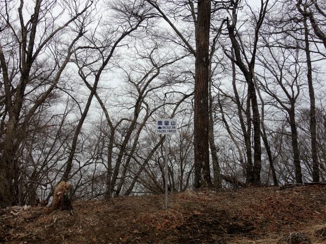 鹿留山(不動湯~杓子山)登山口コースガイド 鹿留山山頂【登山口ナビ】