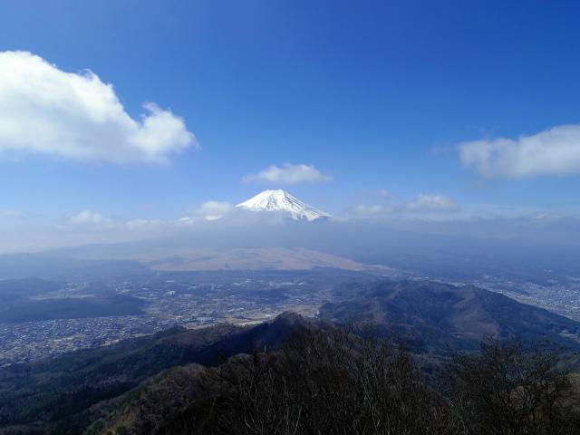 杓子山(鳥居地峠~高座山)登山口コースガイド 杓子山山頂からの富士山の眺望【登山口ナビ】