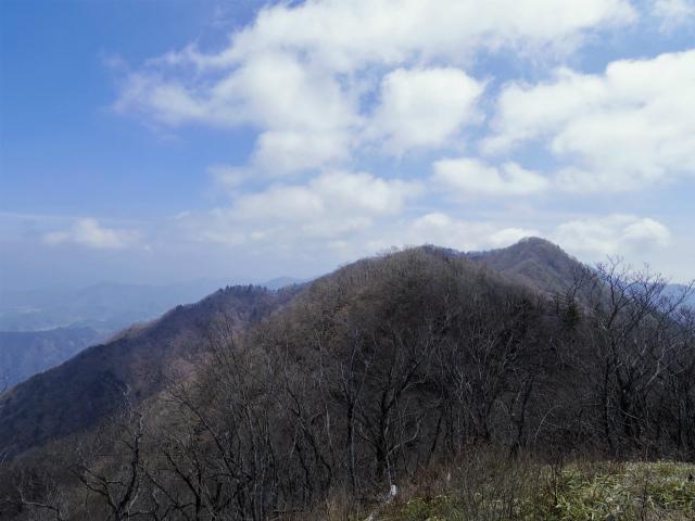 杓子山(鳥居地峠~高座山)登山口コースガイド 杓子山山頂からの鹿留山方面【登山口ナビ】