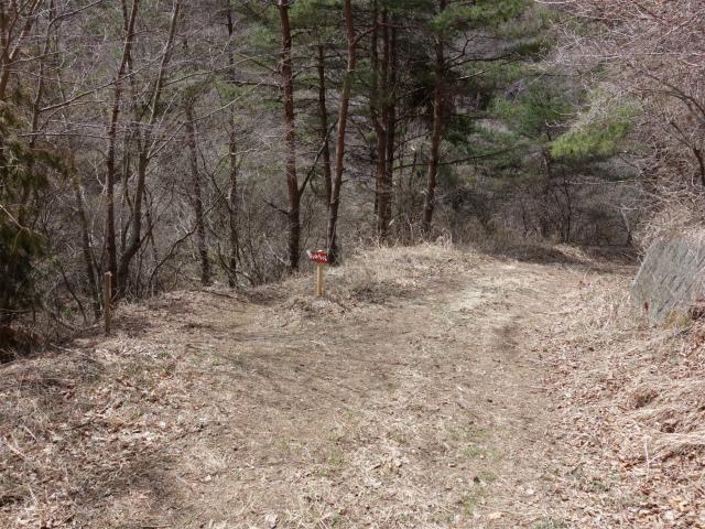杓子山(鳥居地峠~高座山)登山口コースガイド 沢コース【登山口ナビ】
