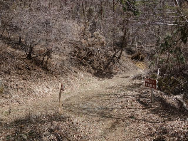 鹿留山(不動湯~杓子山)登山口コースガイド 沢コース分岐【登山口ナビ】