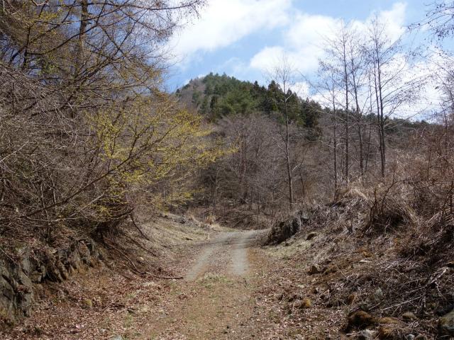 鹿留山(不動湯~杓子山)登山口コースガイド 大明見林道【登山口ナビ】