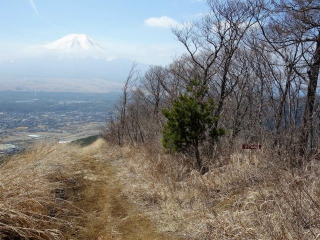 鹿留山(不動湯~杓子山)登山口コースガイド 高座山ログハウス分岐【登山口ナビ】