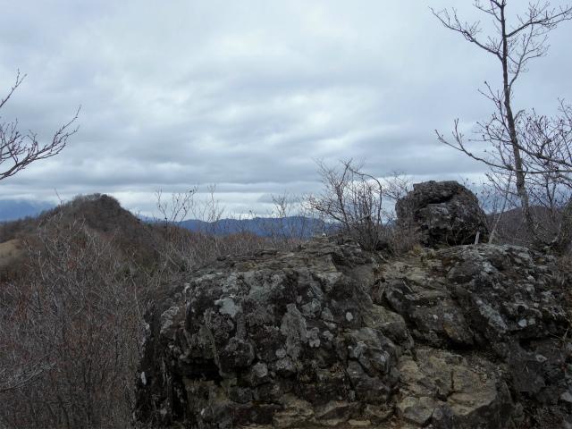 曲岳・黒富士(観音峠大野山林道コース)登山口コースガイド 黒富士山頂直下の展望台【登山口ナビ】