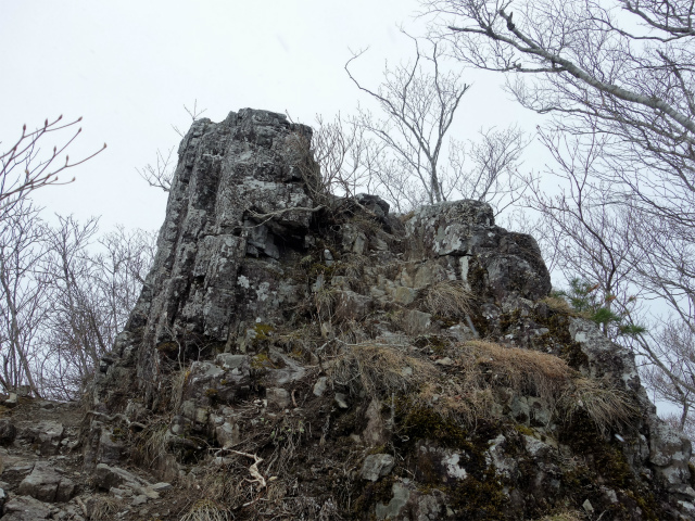 曲岳・黒富士(観音峠大野山林道コース)登山口コースガイド 升形山山頂【登山口ナビ】