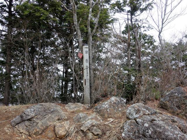 曲岳・黒富士(観音峠大野山林道コース)登山口コースガイド 曲岳山頂【登山口ナビ】