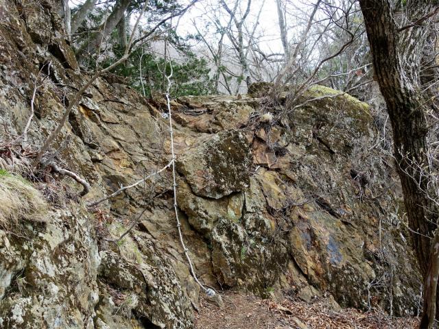 曲岳・黒富士(観音峠大野山林道コース)登山口コースガイド ロープの岩場【登山口ナビ】