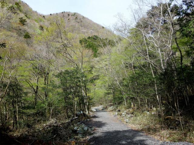 毛無山(不動の滝コース)登山口コースガイド 麓林道【登山口ナビ】
