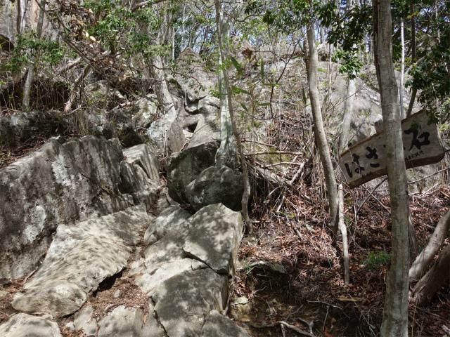 毛無山(不動の滝コース)登山口コースガイド はさみ石【登山口ナビ】