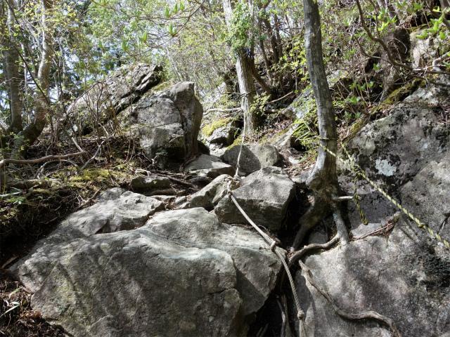 毛無山(不動の滝コース)登山口コースガイド ロープのある岩場【登山口ナビ】