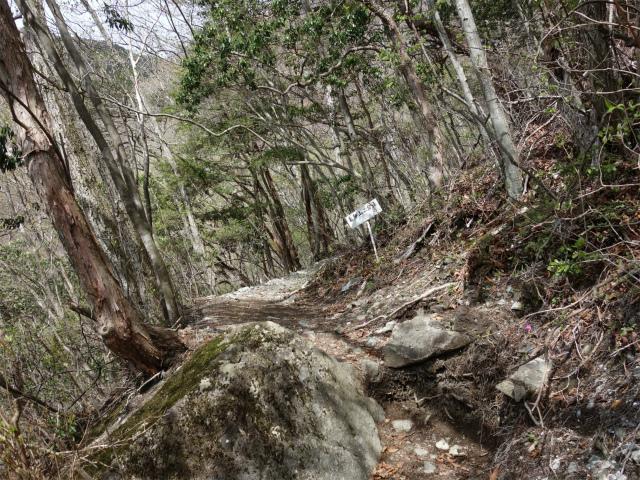 毛無山(不動の滝コース)登山口コースガイド 二合目【登山口ナビ】