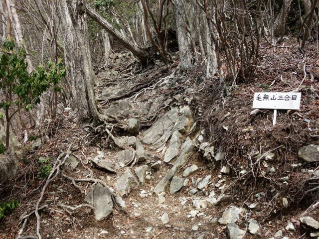 毛無山(不動の滝コース)登山口コースガイド 三合目【登山口ナビ】