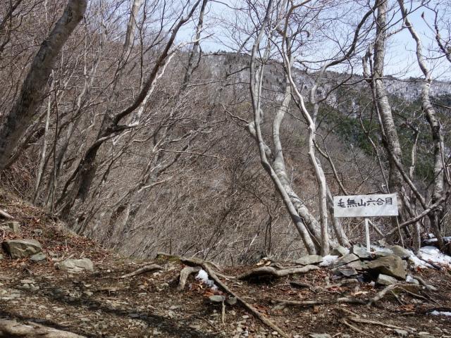 毛無山(不動の滝コース)登山口コースガイド 六合目【登山口ナビ】
