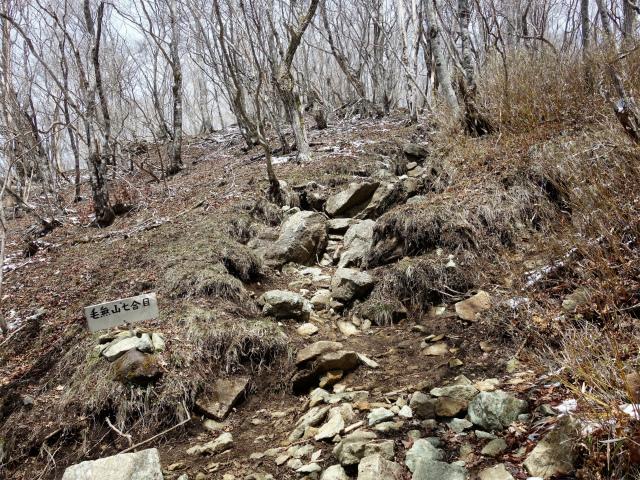毛無山(不動の滝コース)登山口コースガイド 七合目【登山口ナビ】