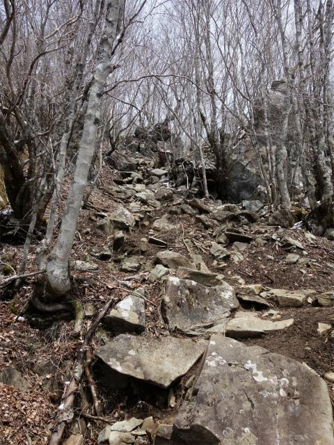 毛無山(不動の滝コース)登山口コースガイド 岩の急登【登山口ナビ】